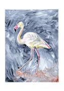 Rainbow Flamingo (prints available)