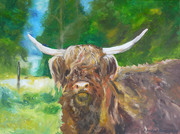 FOR SALE Horned Cow in a Summer field